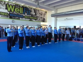 EVVF Referee Seminar - Milan 2014